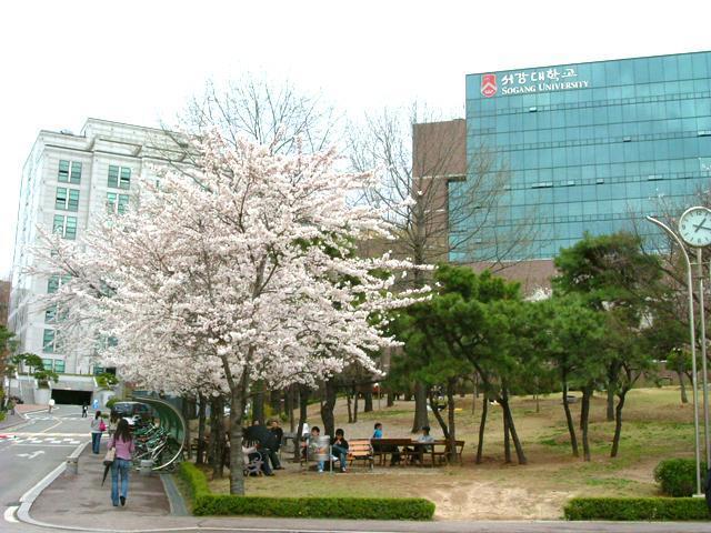 Lợi thế của trung tâm ngôn ngữ Hàn Quốc tại trường đại học Sogang