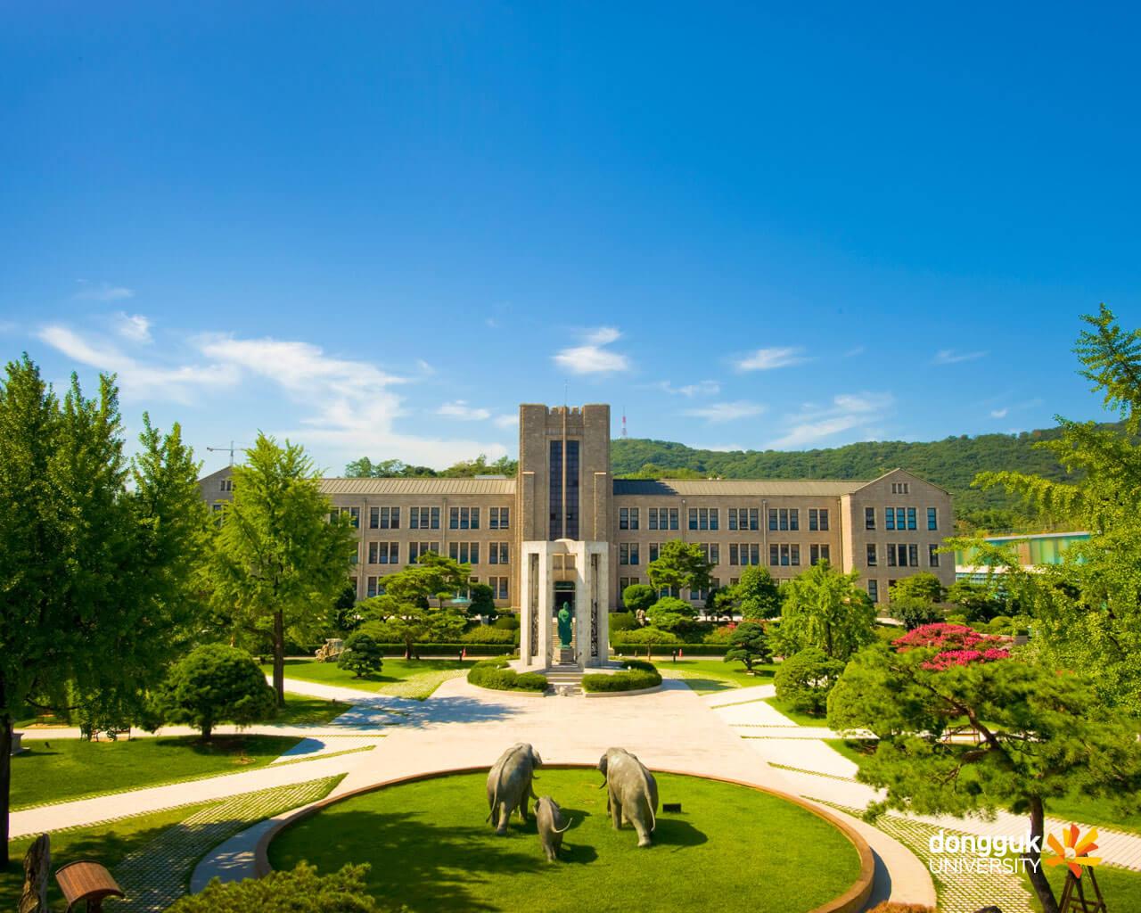 Kinh nghiệm phải nhớ để săn học bổng du học Hàn Quốc