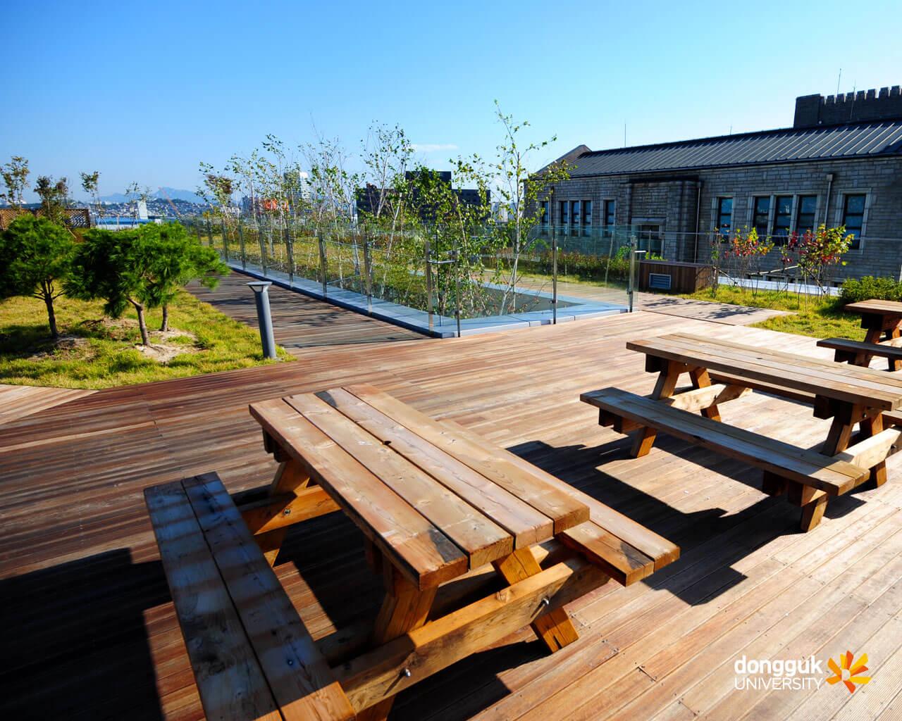 Thông tin về văn phòng Quốc tế trường đại học Dongguk Hàn Quốc