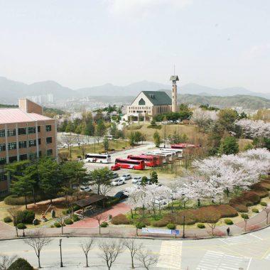 THÔNG TIN TUYỂN SINH CỬ NHÂN VÀ THẠC SĨ NĂM 2021-Trường Đại Học Mokwon- TOP 1%