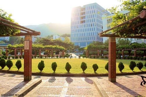 Đại học quốc gia Busan có ưu điểm gì vượt trội?