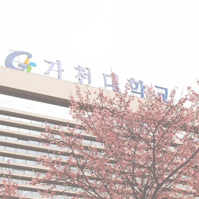 Thông tin về học bổng du học Hàn Quốc tại đại học Gachon