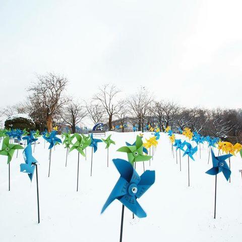 Vào mùa đông giới trẻ Hàn Quốc thường làm gì?