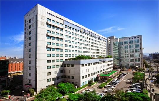 Trường đại học Hanyang hiện có những trường trực thuộc nào?