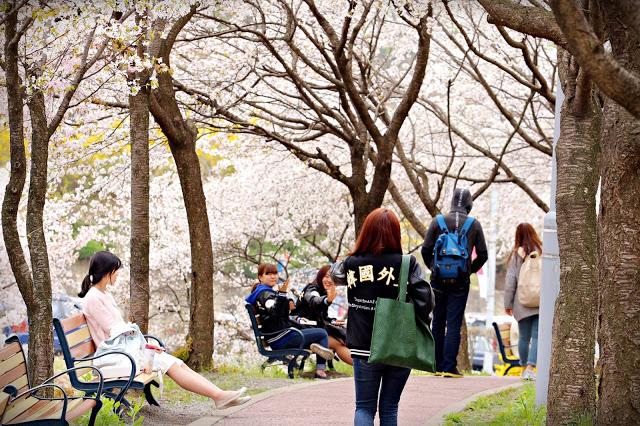 Những lời khuyên giúp bạn tìm việc sau khi tốt nghiệp tiếng Hàn.
