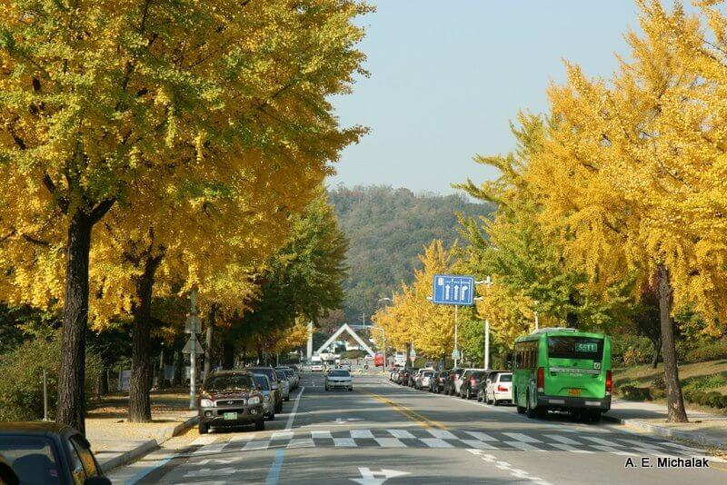 Du học Hàn Quốc đại học Seoul sau đại học –tại sao không?