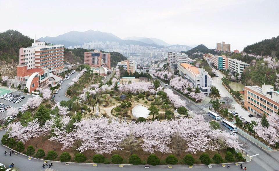 THÔNG TIN TUYỂN SINH CỬ NHÂN VÀ THẠC SĨ NĂM 2021-Trường Đại học Dong-Eui