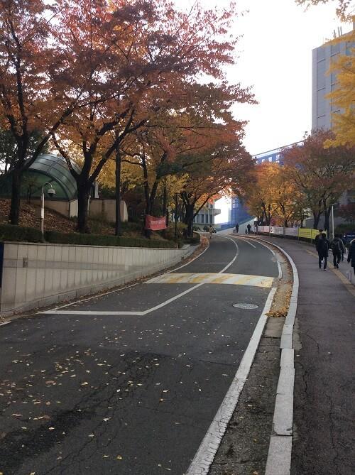 Trường đại học Sogang - trái tim của thủ đô Seoul