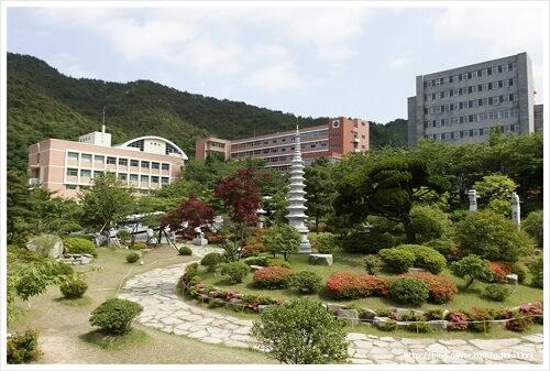 Sức hút từ việc du học tại đại học Hàn Quốc hàng đầu