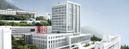 Tìm Hiểu Về Trường Đại Học Dongseo Hàn Quốc