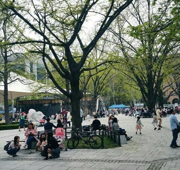 Trường đại học Hansung đang đào tạo những khối ngành nào