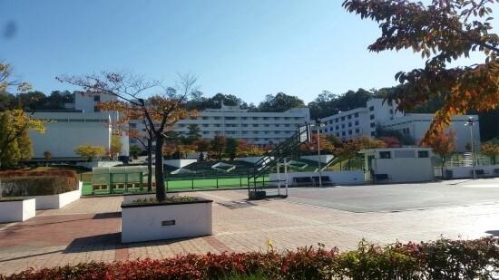 Du học Hàn Quốc dễ hay khó - Đừng để bị sốc văn hóa