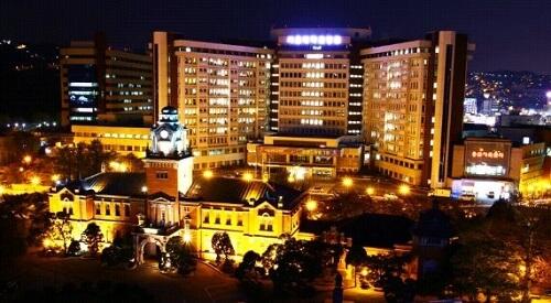 Nên hay không nên học ngành quản trị kinh doanh đại học quốc gia Seoul?