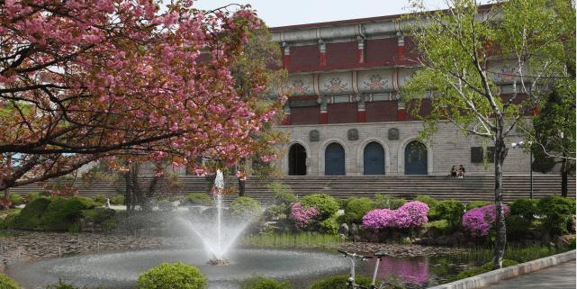 Các ngành học hàng đầu tại Đại học Sejong Hàn Quốc