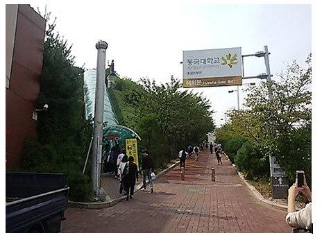 Khám phá đại học Dongguk - trường Phật giáo lâu đời nhất Hàn Quốc