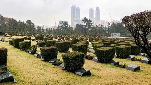 Những danh lam thắng cảnh gần đại học Tongmyong nên khám phá
