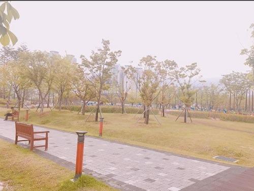 Thông tin mới du học tại đại học Dongseo Hàn Quốc