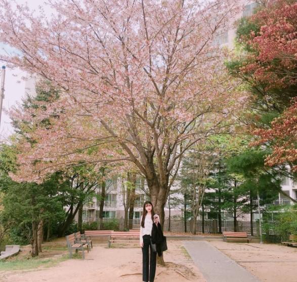 Tìm hiểu học bổng Hàn Quốc trường đại học Gangwon
