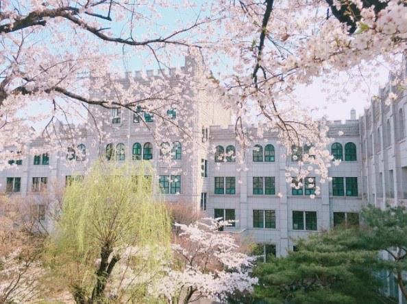 Làm thế nào để ứng tuyển du học tiếng Hàn tại đại học nữ Dongduk