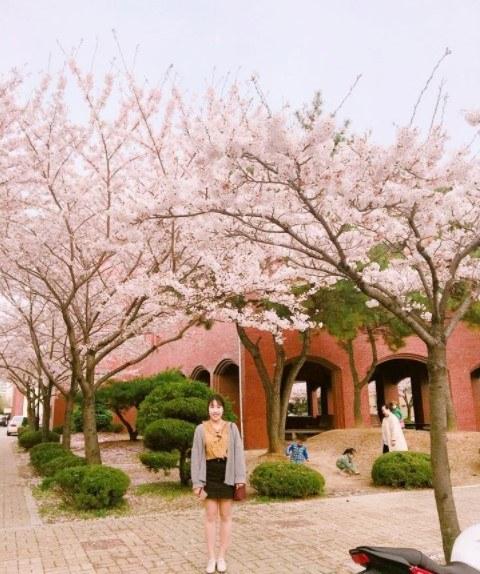 Thông tin về ký túc xá trường đại học Pukyong