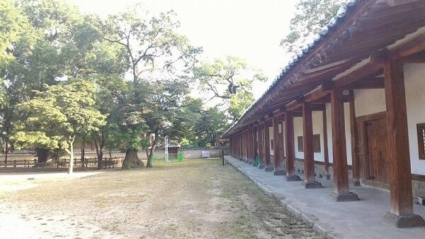Đại học Sungkyunkwan qua lời kể của du học sinh Việt