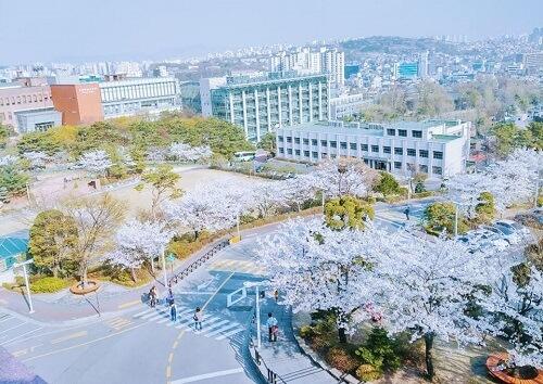 Bắt đầu chuyến tham quan trường Đại học Sungkyunkwan Hàn Quốc