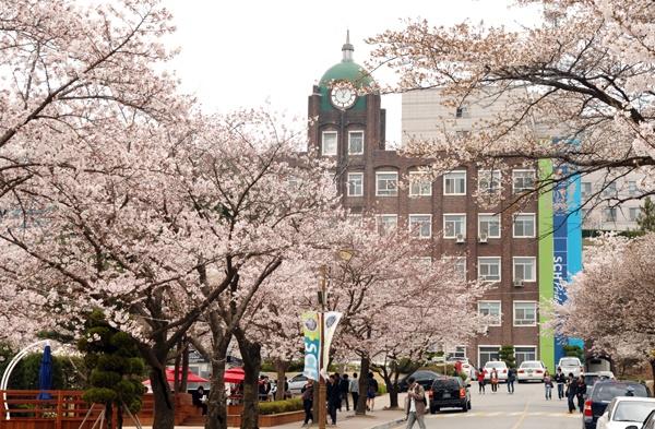Kết quả hình ảnh cho trường đại học soonchunhyang NGÀNH Y
