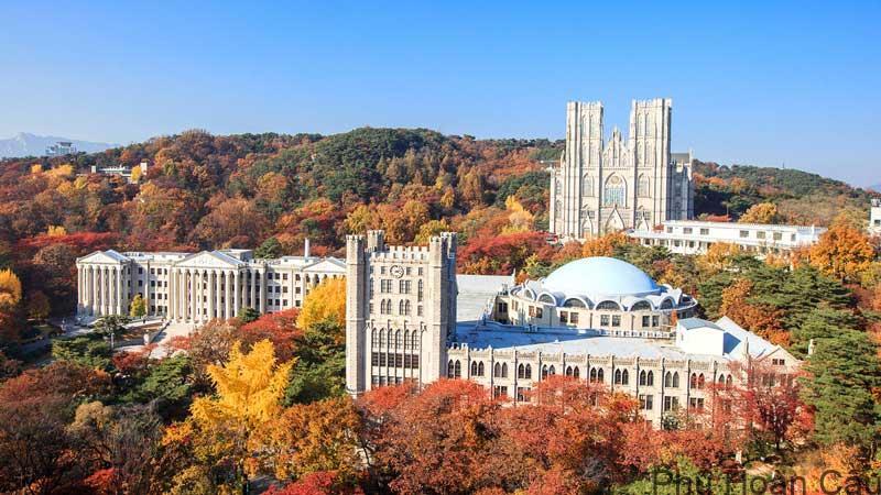 THÔNG TIN TUYỂN SINH CỬ NHÂN VÀ THẠC SĨ NĂM 2021-Trường Đại Học KyungHee