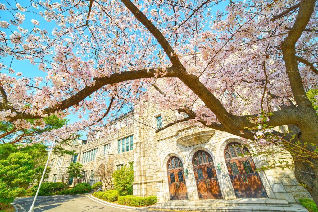 THÔNG TIN TUYỂN SINH CỬ NHÂN VÀ THẠC SĨ NĂM 2021-Trường Đại học nữ Ewha - TOP 1%