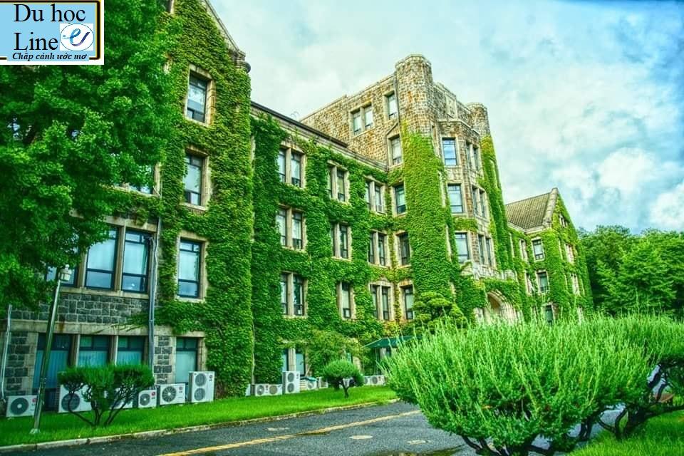 THÔNG TIN TUYỂN SINH CỬ NHÂN VÀ THẠC SĨ NĂM 2021-Trường Đại Học Yonsei - TOP 1%