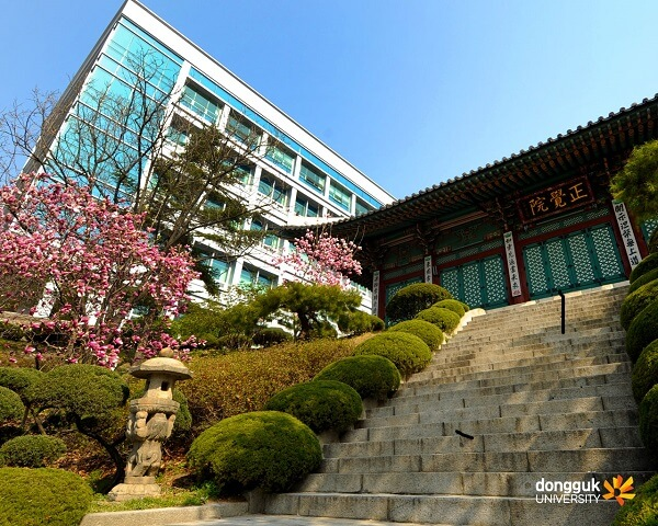 Kinh nghiệm thích nghi dễ dàng với cuộc sống tại đại học Dongguk